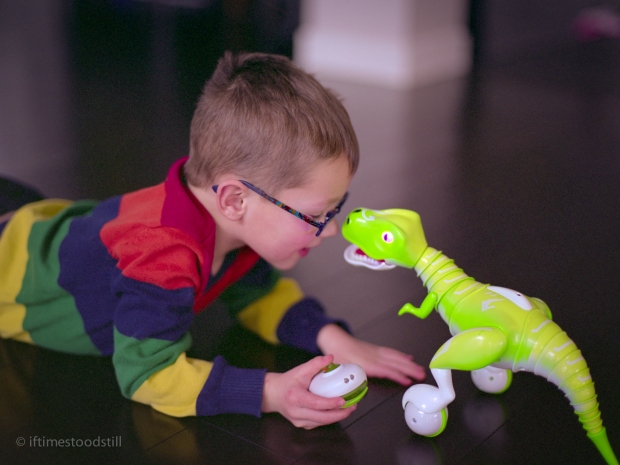 Boy&Dinosaur