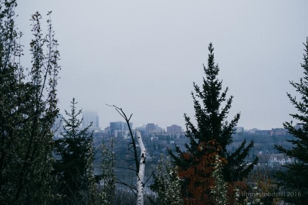 scenery-8